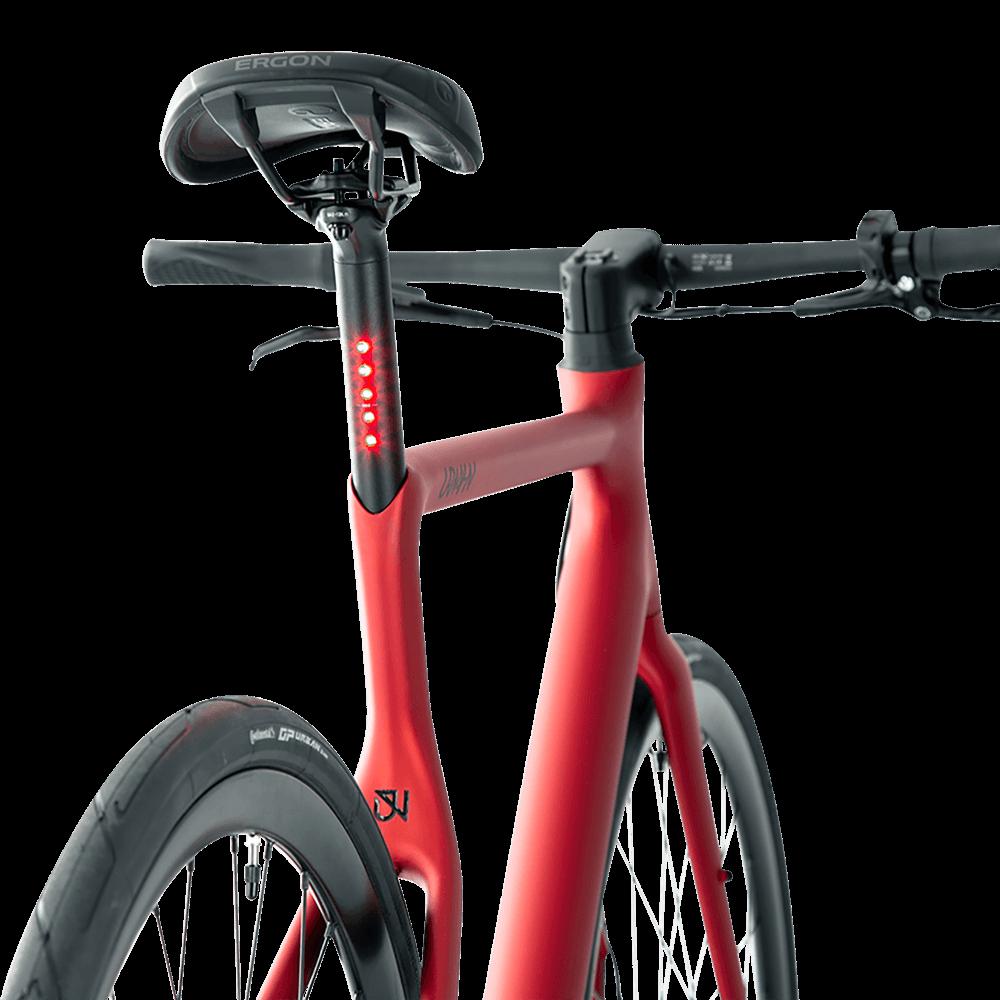 Urwahn Bikes Platzhirsch (Bild 5)